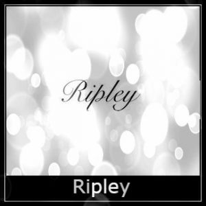Ripley Air Rifle Spares Logo
