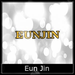 Eunjin Air Rifle Spares Logo