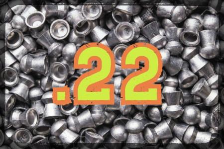 .22 Airgun Pellets