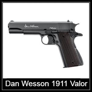 Dan Wesson air pistol Spare Parts